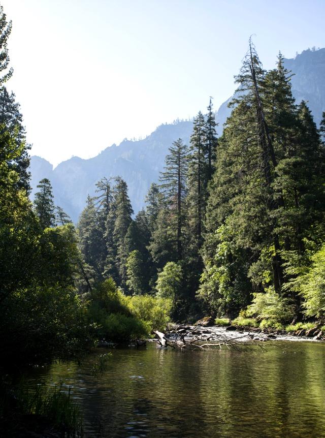frühstück bei Emma Yosemite National Park - Yosemite Lakes