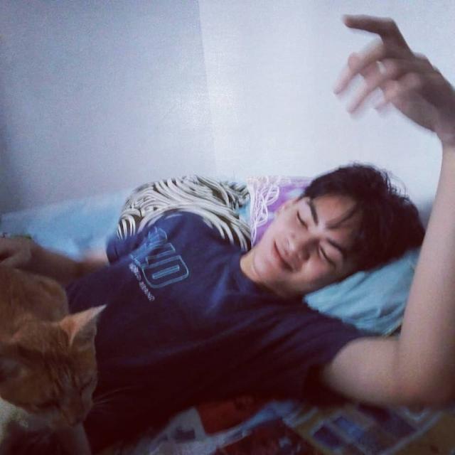 Jun Penyayang Kucing