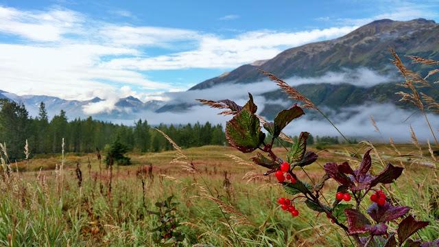 Turnagain-Pass-Kenai-Seward-Alaska