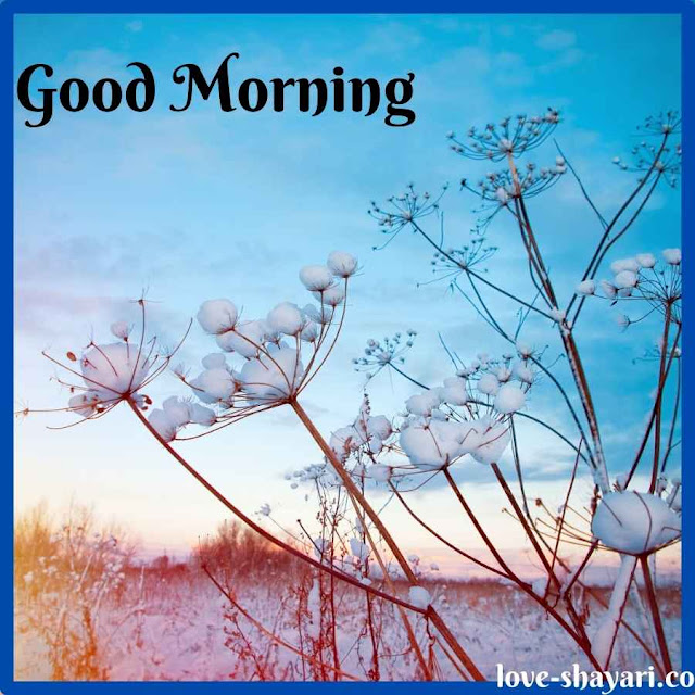 good morning all images