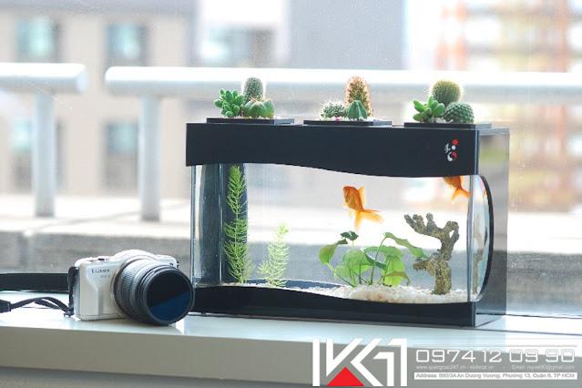 Bể cá mini phong thủy để bàn