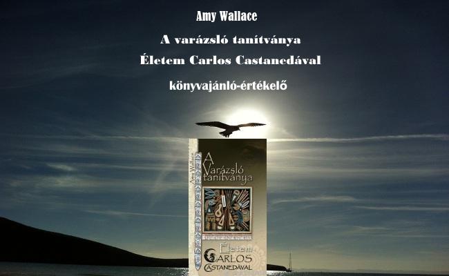 Amy Wallace A varázsló tanítványa könyvajánló-értékelő
