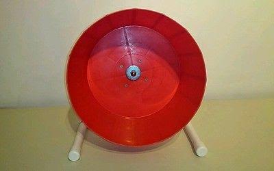 wheel-do-choi-cho-nhim-canh-nhim-kieng-4