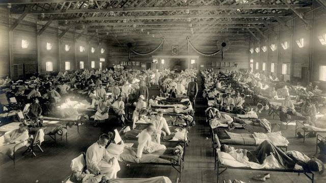 les pandémies dans l'histoire