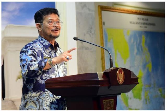 Stok Melimpah, Presiden Jokowi Instruksikan Siapkan Ekspor Beras