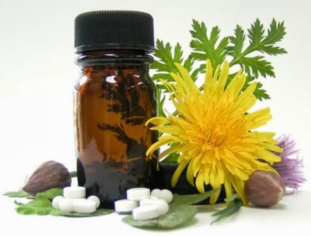 Resultado de imagem para homeopatia na agricultura