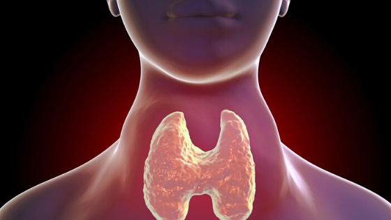 What is thyroid & Don't Eat 5 Thing