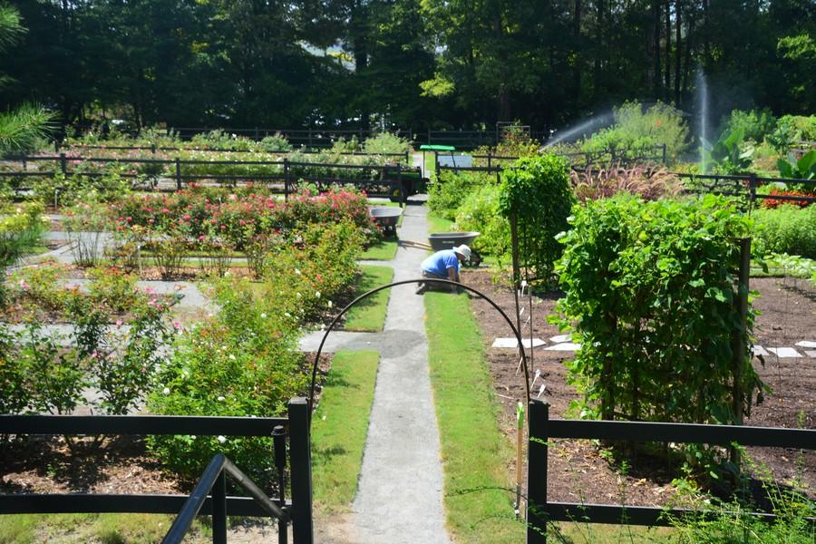 Le joli jardin et potager de Reynolda Estate