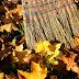 Le grand ménage d'automne
