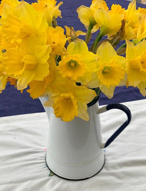daffodils in vintage enamel coffee pot