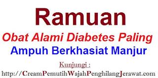 Ramuan Obat Alami Diabetes Paling Ampuh Berkhasiat Manjur