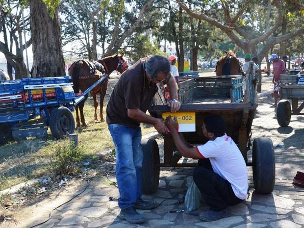 Secretaria quer emplacar e cadastrar carroças de tração animal em Juazeiro do Norte