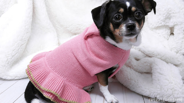 Bond & Co. Pink Dog Sweater Dress