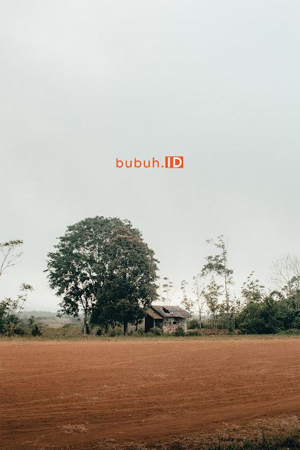 Cara self healing asik di musim pandemi - Sekitar rumahmu bisa menjadi tempat wisata ( Cekdam Pagelaran Purabaya Sukabumi )