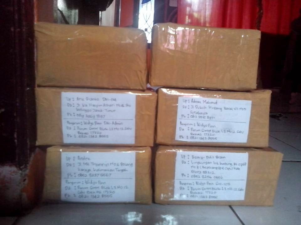 Pengemasan-Packing Voltage Stabilizer Accu
