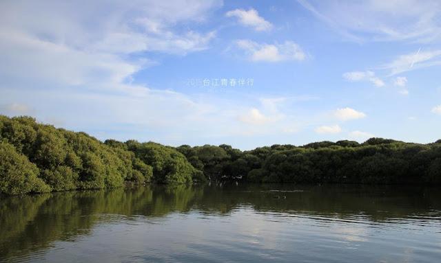 廣大的紅樹林,是西部海岸的珍貴資產。