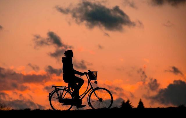 وزيرة,نمساوية,تختار,الدراجة,كوسيلة,نقل,أساسية