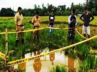 Diduga Akibat Penggunaan Air Sumur Bor Berlebihan, Tanah Persawahan di Labakkang Amblas Kebawah