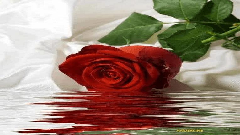 Puisi Ketulusan Doa Perpisahan Cinta
