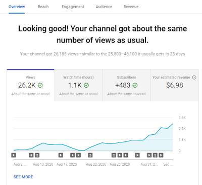 YouTube Earning Proof 2020