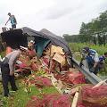 Seruduk Belakang Truk Tronton di Tol Salatiga - Bawen, Colt Diesel Isuzu Giga Bemuatan Cabe Ringsek - Pengemudi Tewas