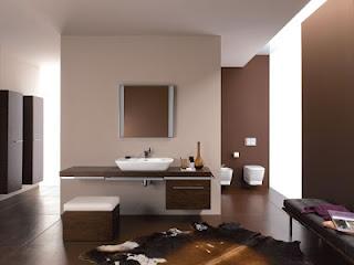 Cuartos de baños marrones