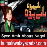 https://aliwalayazadar.blogspot.com/2020/08/syed-amir-abbas-naqvi-nohay-2021.html
