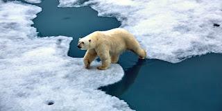 Faktor-Faktor Penyebab Perubahan Iklim