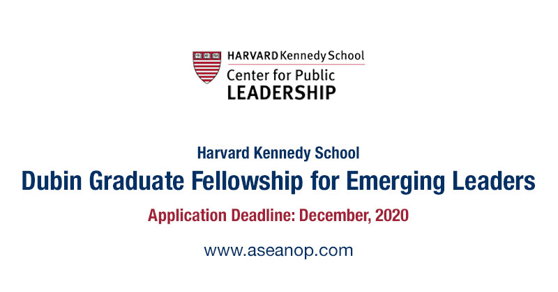 Harvard Kennedy School Dubin Masters Fellowship 2021/2022 for Emerging Leaders – USA