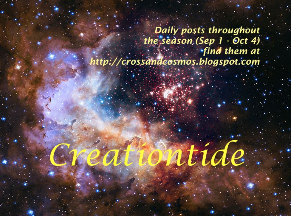 Creationtide Collection