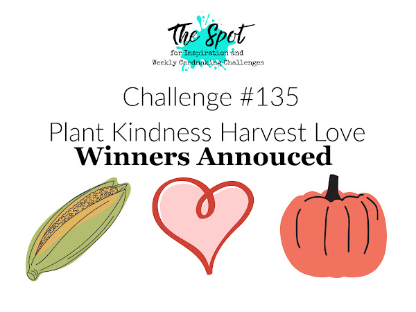 Challenge Winners Announced #135