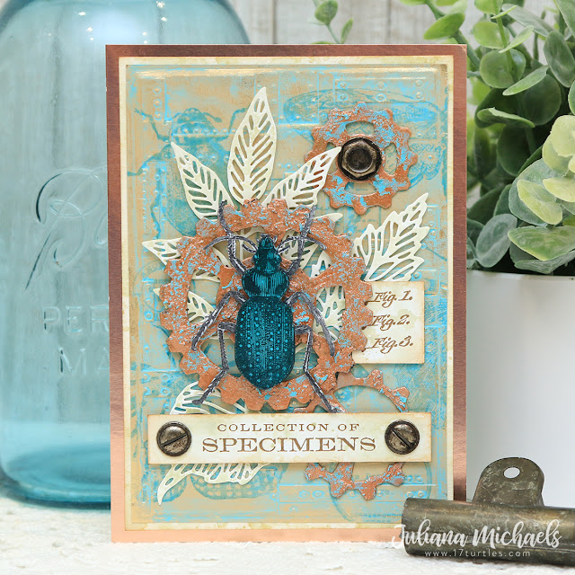 Collection of Specimens Card by Juliana Michaels featuring Tim Holtz Salvaged Patina Distress Ink, Specimen Stamp Set and Mechanical Bigz Dies.