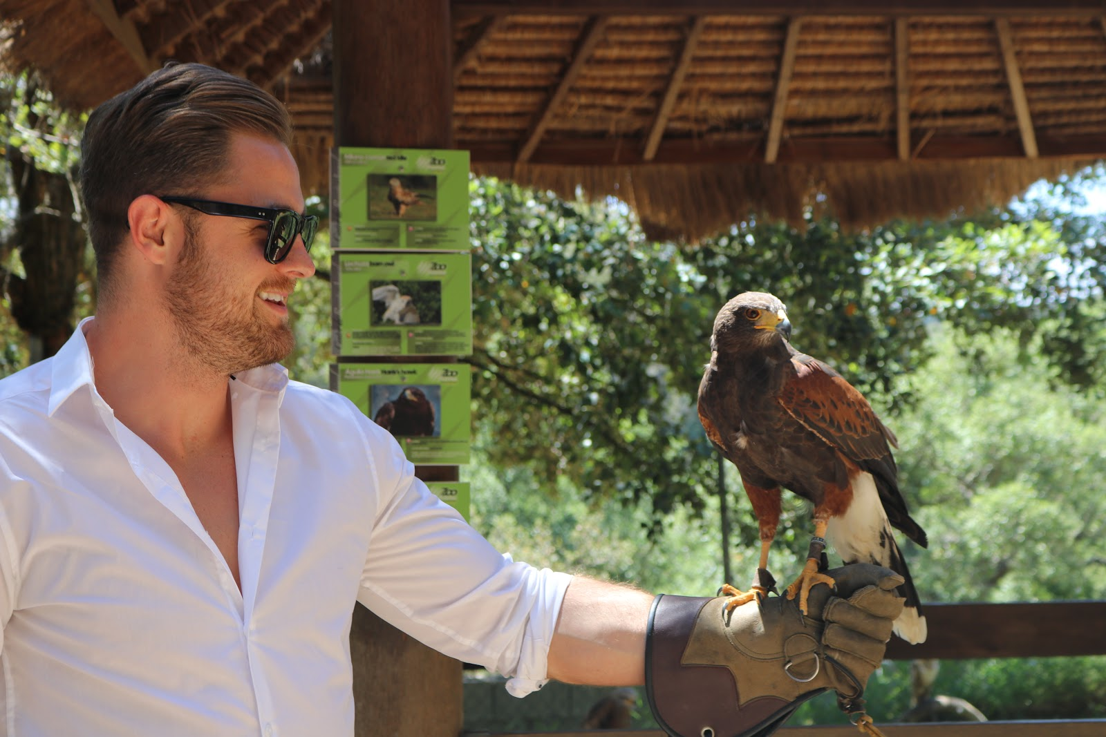 Ben Heath, Twenty First Century Gent with an eagle in Zoo De Castellar, Spain