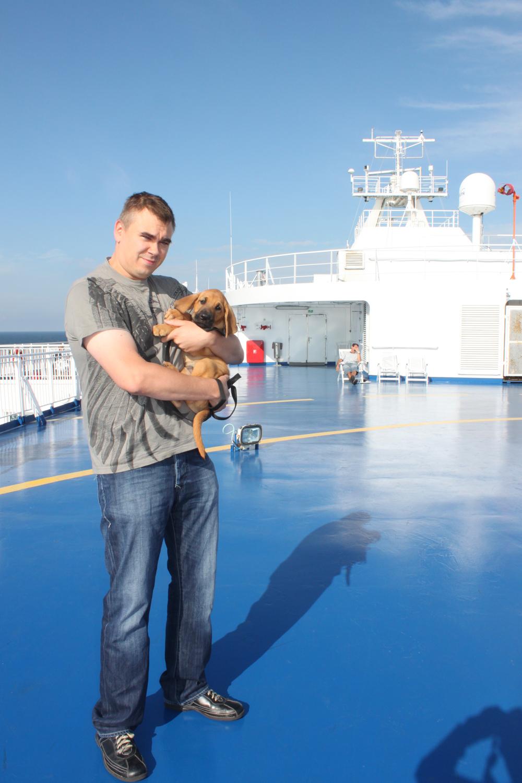 Koiranpennun hakumatkalla Tanskassa 22