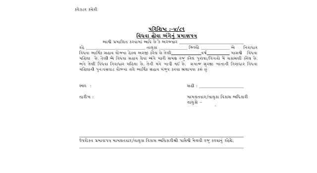 Vidhva Sahay Yojana Gujarat | Apply Online, Application Form