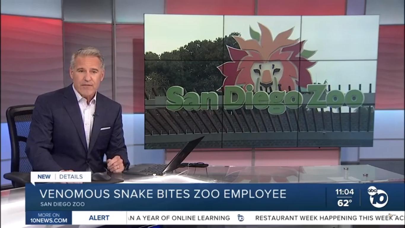 Venomous snake bites San Diego Zoo employee