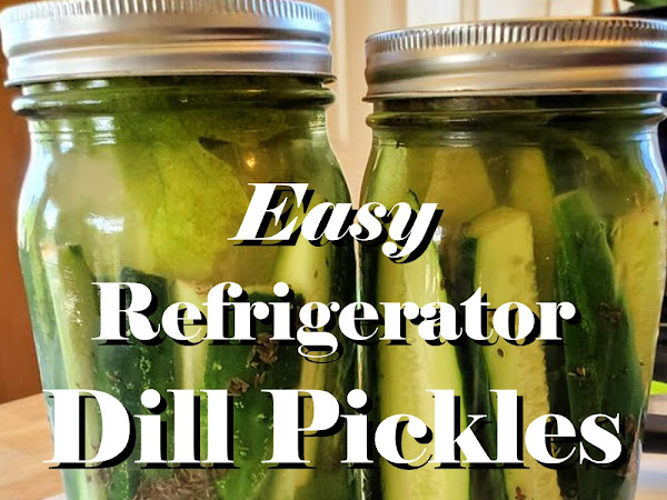 Easy Refrigerator Dill Pickles Recipe