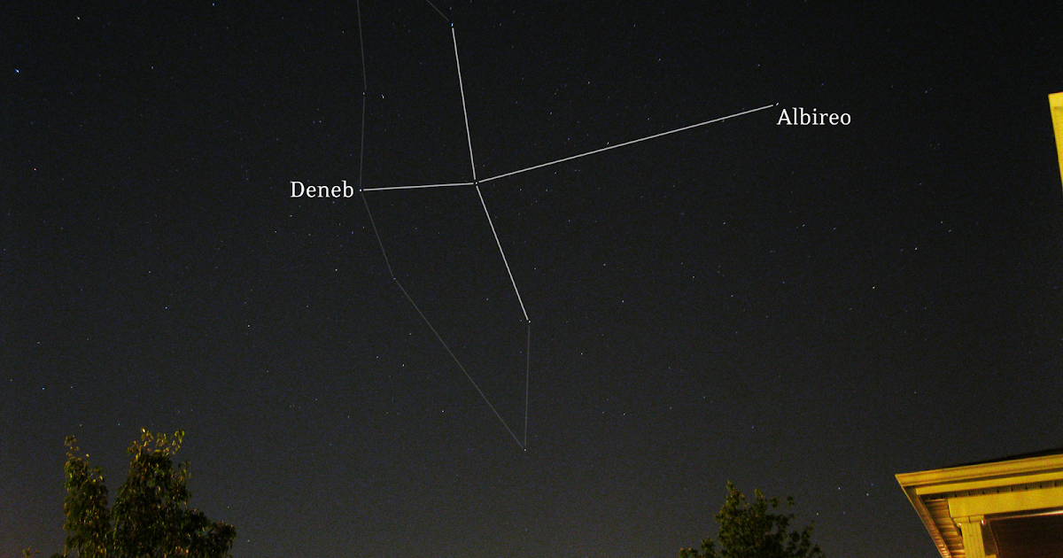 Cygnus constellation with Deneb and Albireo labeled ...