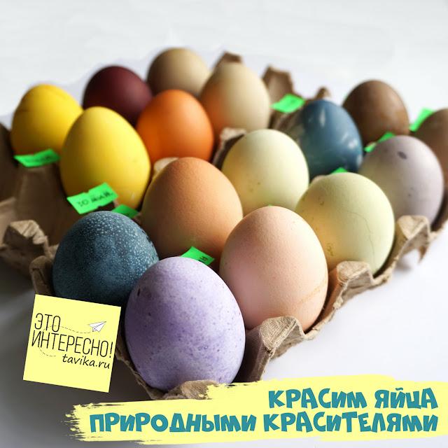 как красить яйца натуральными красителями
