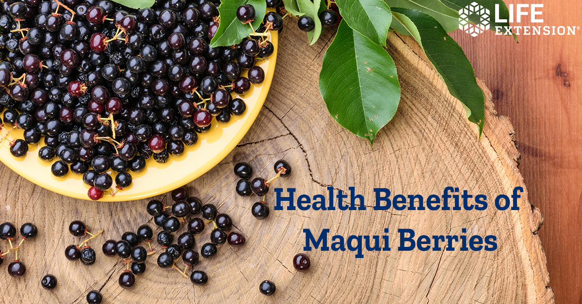 The Life Extension Blog Is Maqui Berry Good For Dry Eyes
