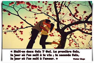 Citation sur l'amour - Citation sur la vie