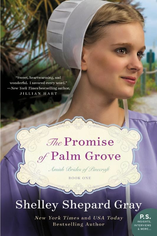 Review - The Promise of Palm Grove