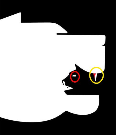 ilk-hangi-hayvani-gordunuz-kedi.jpg