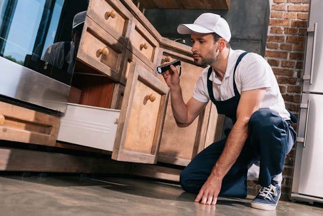 Roaches Control Service Westchester NY