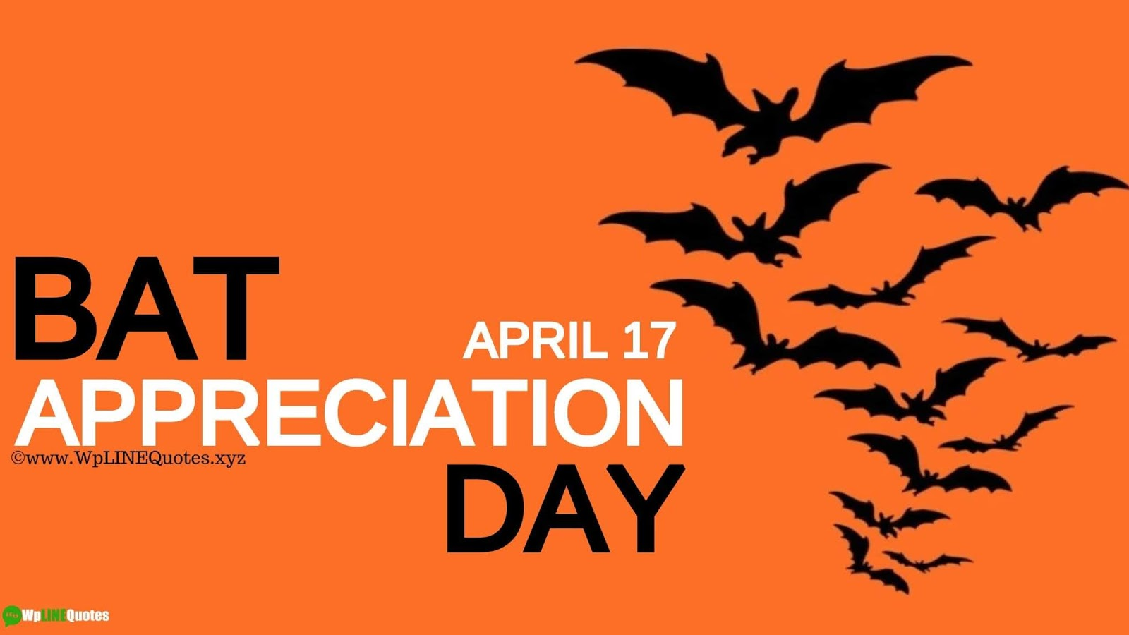 Bat Appreciation Day Quotes, Message, History, Facts, Images