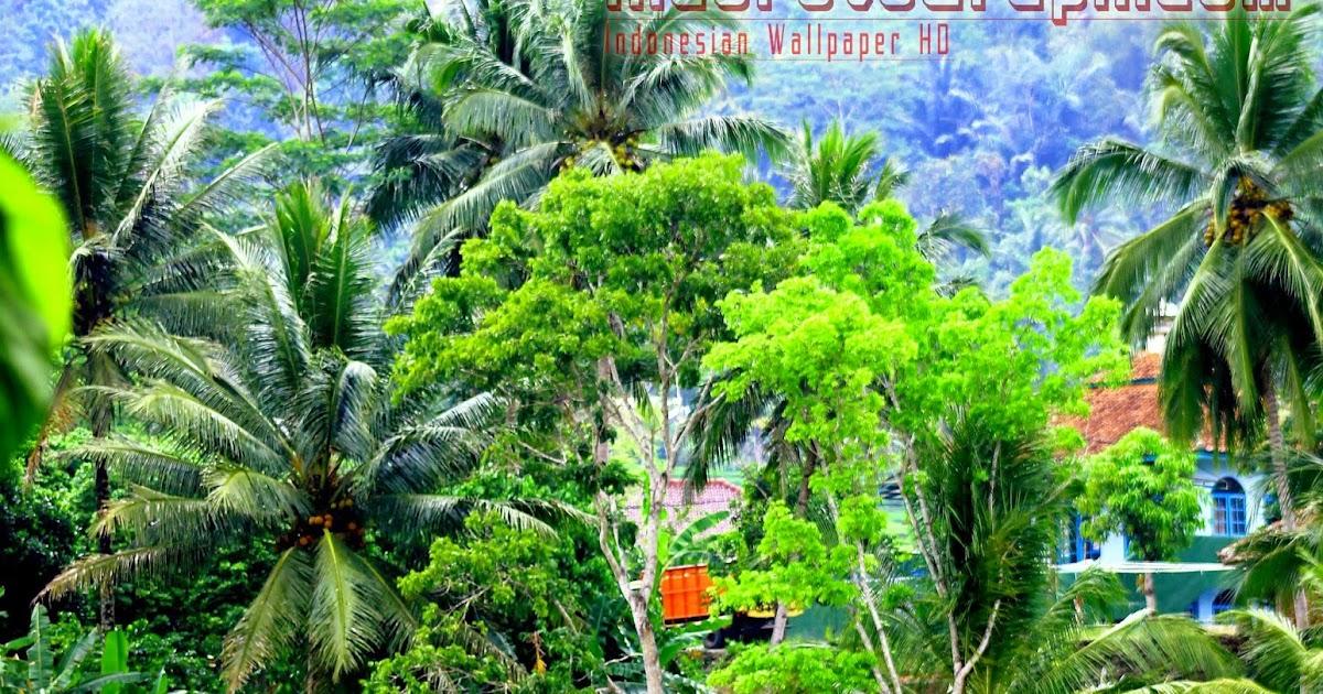 Download Gambar Pemandangan Untuk Wallpaper 3d Wallpapers