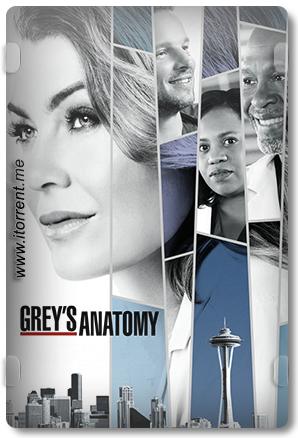 Grey's Anatomy Season 14 (2017) Torrent
