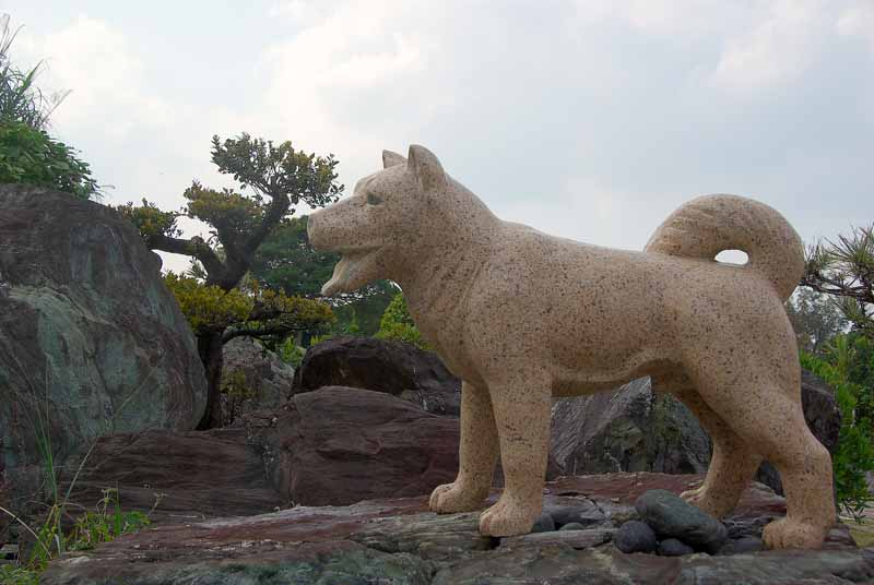 Ryukyu Life: A Statue The Most Loyal and Faithful Dog in ...