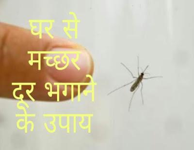 घर मे मच्छर भगाने के सरल उपाय