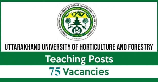 UUHF Recruitment 2019 for 75 Posts